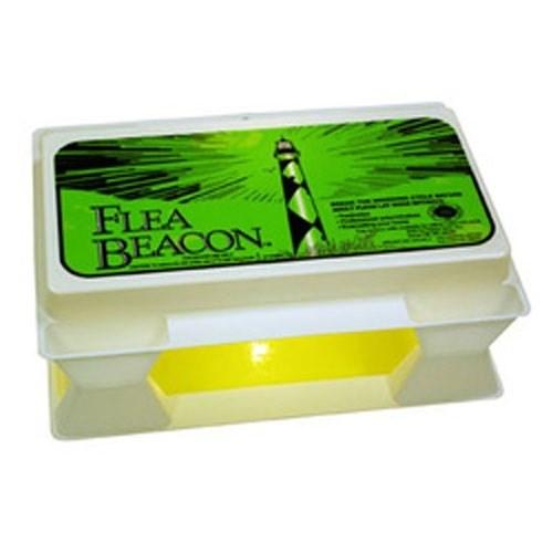 Happy Jack - Flea Beacon