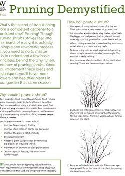 Pruning Demystified