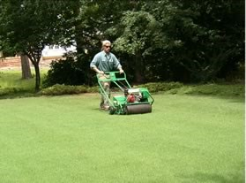 Great mowing, edging, and aeration are an artform
