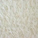 Frieze (Shag) Carpet