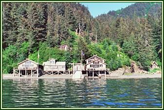 Alaska's Sadie Cove Wilderness Lodge - 7