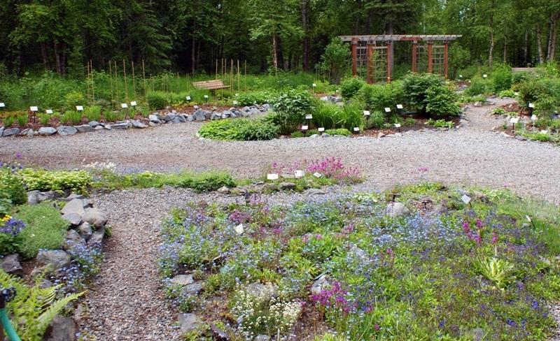 Alaska Botanical Garden - 7
