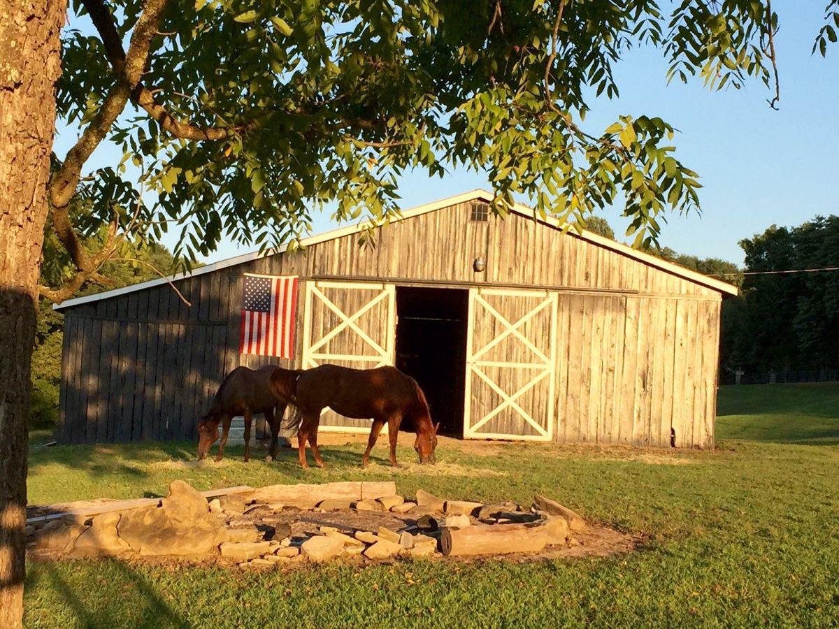 A&E Farm - 7