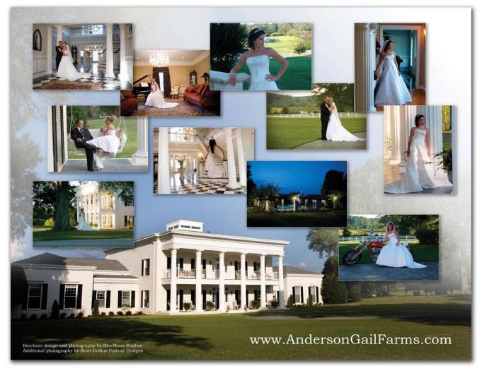 Anderson Gail Farms - 7