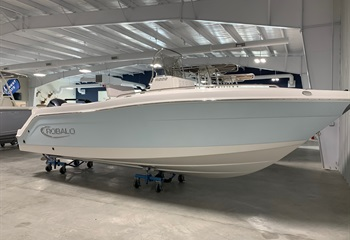 2021 Robalo R222 Ice Blue/White (ON ORDER) Boat