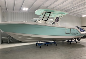 2020 Robalo R272 Seafoam/White (ON ORDER) Boat