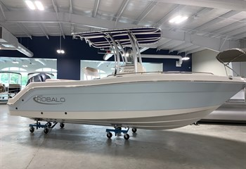 2021 Robalo R222 Ice Blue/White (CLAYTON) Boat